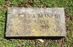 Albert A Brandau