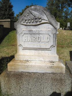 Harold E Rivett