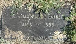 Charles Albert Barnett