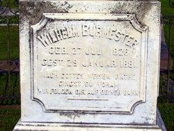 Wilhelm Burmester