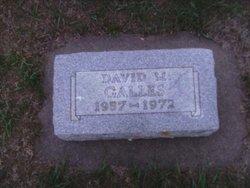 David Milton Galles