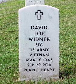David Joe Widner