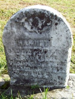 Harriet Ambrose