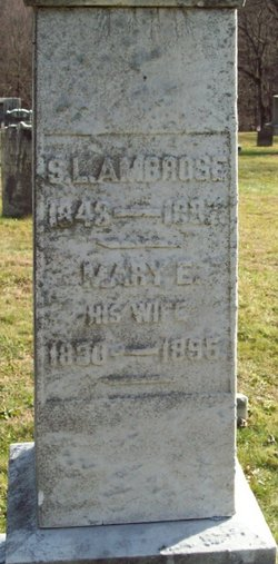 Mary E Ambrose