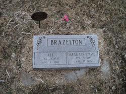 Sarah Ann <i>Chesnut</i> Brazelton