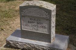 Baby Boy Marley