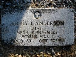 Julius John Anderson