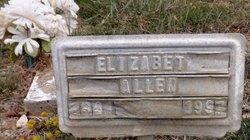 Elizabeth Hanna <i>Carnes</i> Allen