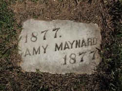 Amy Maynard