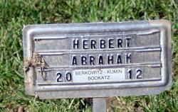 Herbert Abraham