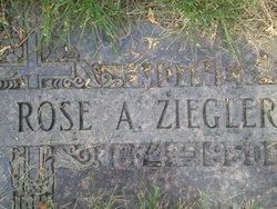 Rose A <i>Weiss</i> Ziegler