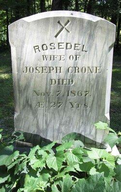 Rosedel <i>Fredette</i> Crone