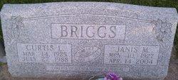 Janis M. <i>Bloomberg</i> Briggs