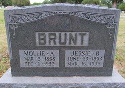 Jessie B Brunt