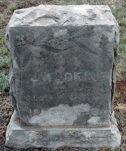 James Madison Adkins