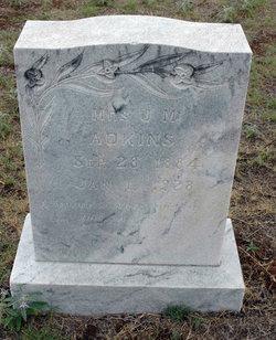 Elizabeth A. Bettie <i>McCluskey</i> Adkins
