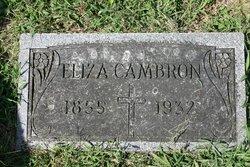 Eliza <i>Logsdon</i> Cambron