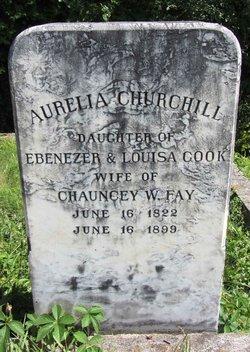 Aurelia <i>Churchill</i> Fay
