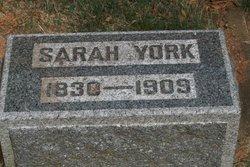 Sarah <i>York</i> Doran