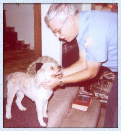 Princess Bachman Prin Dog