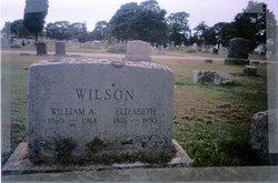 William Andrew Wilson