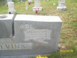 Barney Ellis Blevins, Sr