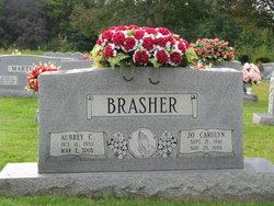 Jo Carolyn <i>Wilson</i> Brasher