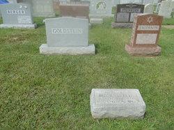 Bessie <i>Levin</i> Goldstein