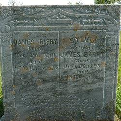 Sylvia Ann <i>Woodman</i> Barry