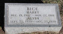 Alvin Bice