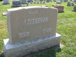 David Amstutz