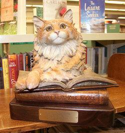 Dewey Readmore Books