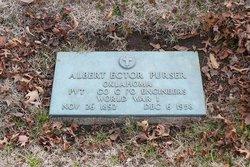 Albert Ector Purser