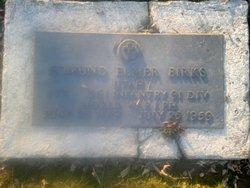 Edmund Elmer Birks