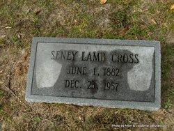 Seney Waltermon <i>Lamb</i> Cross