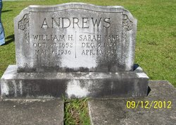 Sarah Jane <i>Brantley</i> Andrews