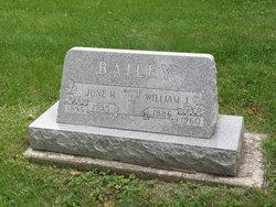 William J Bailey