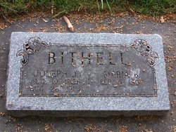 Joseph J Bithell