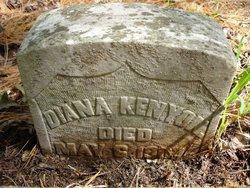 Dianna Diane <i>Vanderburgh</i> Kenyon