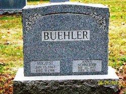 Anna <i>Schneider</i> Buehler