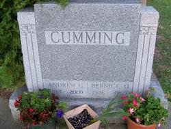 Andrew G Cumming