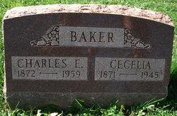 Cecelia Baker