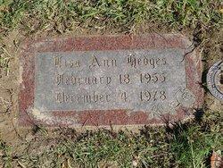 Lisa Ann Hedges