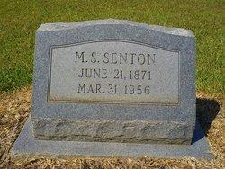Moritz S. Senton