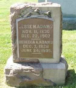 Rebecca A Adams