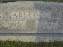 Selie Arledge