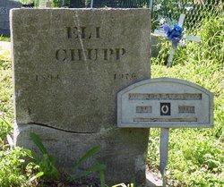 Eli S. Chupp