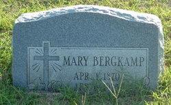 Mary Bergkamp