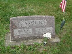 James H Anglin