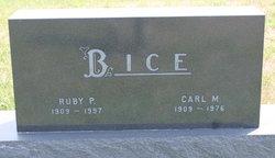 Carl M. Bice